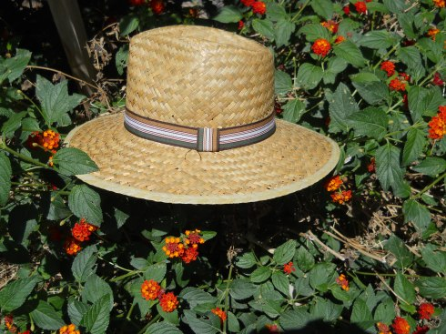 sunn protection, disabled shopping, summer hats, disabled accesssories, wefly2,hats